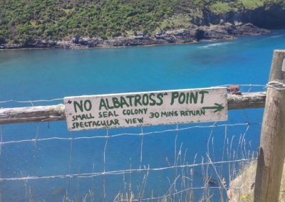 No Albatross Point